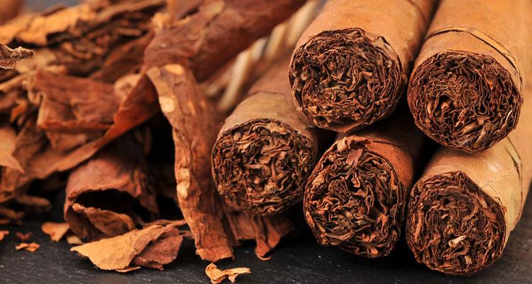 Chanel Egoiste perfumy tytoniowe
