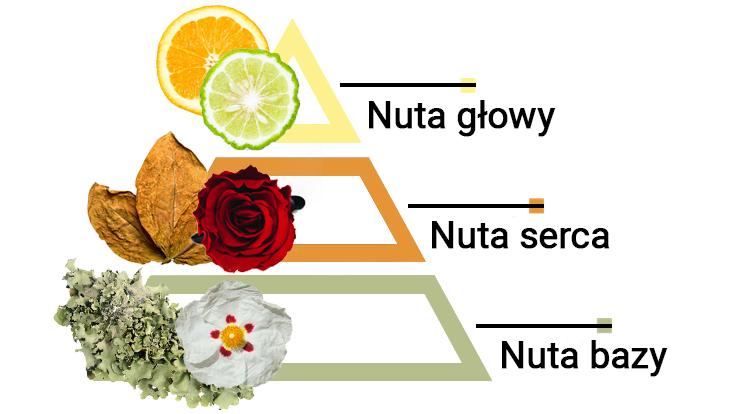 jak pachna perfumy szyprowe