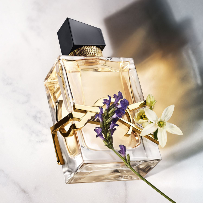 Yves Saint Laurent nuty zapachowe